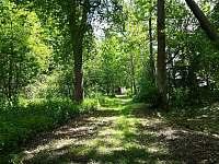 Chata Hronův lesík - pronájem chaty - 7 Klenovice