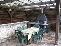 Ubytování Vltava na chatě k pronájmu - Týn nad Vltavou