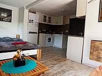 House Veronika - apartmán k pronájmu - 6 Kosov