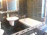 Koupelna v přízemí - pronájem chalupy Kukle