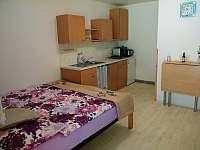 Pokoj č.4 - Dvou lůžkový s kuchyňským koutem a vlastní koupelnou. - ubytování Hamr