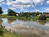 Soukromý sousední rybník - Mokrá