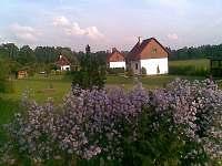 Nová Včelnice - chata k pronajmutí - 12