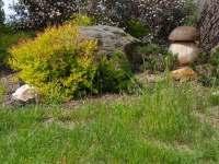 zahrada - chalupa k pronajmutí Lutová