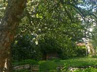 zahrada - Jistebnice