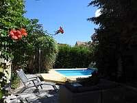 Terasa - venkovní sprcha a bazén - vila ubytování Adamov