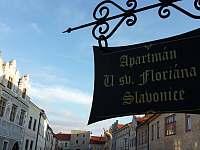 Slavonice - apartmán k pronájmu - 3