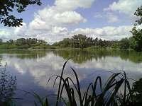 Jeden z tisíce rybníků