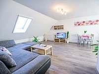 apartmán - obývací pokoj - rekreační dům k pronájmu Třeboň