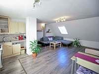 apartmán - obývací pokoj s kuchyňským koutem - Třeboň
