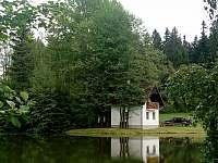 Na samotě u rybníka - pronájem chaty - 12 Bořetín