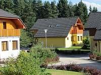 Vila na horách - okolí Loučovic