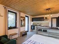 Lipno - studio - interiér 2 - apartmán k pronájmu