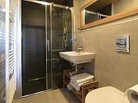 Lipno - studio - koupelna - apartmán ubytování Lipno nad Vltavou - Kobylnice