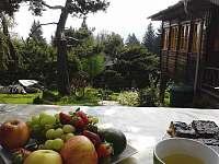 Snídaně v přírodě - chata k pronajmutí Lipno nad Vltavou - Kobylnice