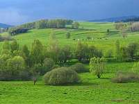 Lipno chata - pohled z okna I - k pronájmu Pernek - Hory