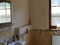 Dolní apartmán koupelna + wc