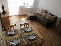 obývací prostor - apartmán k pronájmu Horní Planá