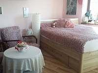 Apartmán Anna obývací pokoj - Třeboň - Branná