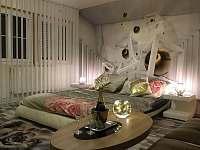 Apartmá - Lipno nad Vltavou