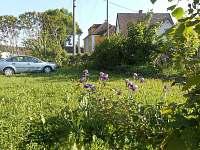 parkování na oplocené zahradě u objektu