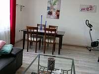 Apartmán HUGO - apartmán ubytování Kamenný Újezd - 2