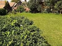 oplocená zahrada - Olešnice u Trhových Svinů