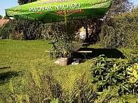 zahrada - Olešnice u Trhových Svinů