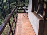 terasa - pronájem chaty Holubov