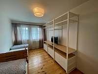 Apartmány Lipno 46 - apartmán k pronajmutí - 8