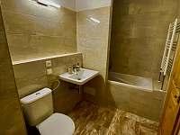 Apartmány Lipno 46 - apartmán - 13