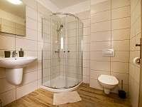 Koupelna se sprchovým koutem - stejné u každého pokoje - Pluhův Žďár - Jižná