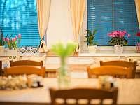 restaurace - Pluhův Žďár - Jižná