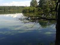krásná příroda okolo místních rybníků