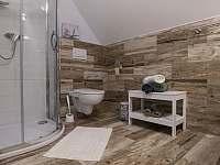 Apartmány Allis - penzion - 17 Lipno nad Vltavou
