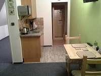 Rodvínov - apartmán k pronajmutí - 17