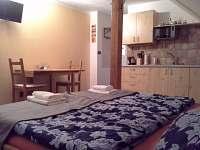 Rodvínov - apartmán k pronajmutí - 22