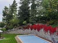 ozdobná velká zahrada 3000qm s bazénem 5x12m s vytápěním - apartmán k pronajmutí Jindřichův Hradec