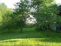 zahrada - Mnich u Kamenice nad Lipou