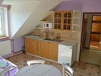 apartman 1 - kuchyň - rekreační dům ubytování Chrášťany