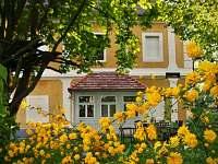 U objektu rozsáhlá zahradu plná květů a stromů