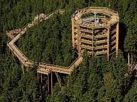 okolí - stezka korunami stromů na Lipně