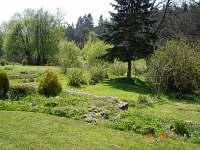 Zahrada - chalupa k pronájmu Staré Hobzí