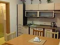 kuchyň - apartmán k pronajmutí Kájov - Kladné