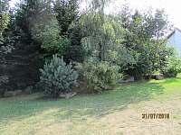 Pohled od chaty 1 na les