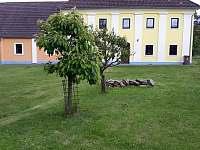 pozemek - chalupa k pronájmu Koloděje nad Lužnicí
