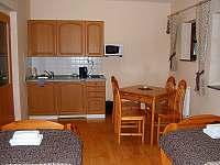Čtyřlůžkový apartmán v 1.patře - pronájem vily Horní Planá