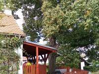 Pohled ze zahrádky na verandu