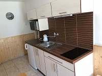 Kuchyň - apartmán k pronájmu Jindřichův Hradec