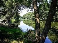 Pohled ze zahrady na Nežárku - pronájem chaty Dolní Žďár
